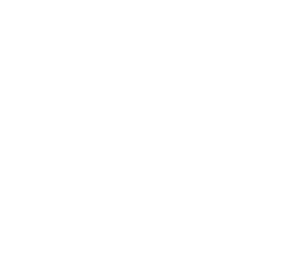 Banniere carre _Rhinor_Palace_Blanc